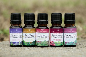 Adult Allergy Support Essential Oil Pack